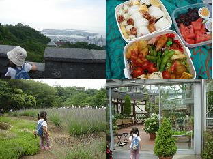 神戸布引ハーブ園 ラベンダー収穫体験 見晴らし ピクニック