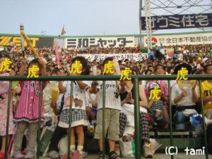 甲子園球場 阪神タイガース プロ野球観戦