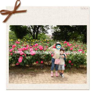尼崎農業公園 公園 バラ花見 ピクニック