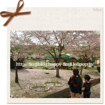富田林市農業公園サバ―ファーム 桜花見 ピクニック バーベキュー 味覚狩り イチゴ狩り