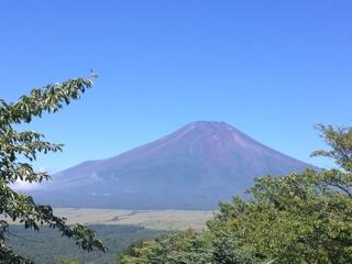 富士山 静岡旅行