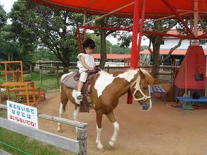 淡路島旅行 県立淡路島公園 淡路島牧場 ポニー乗馬 ステーキハウスGENPEI ピクニック 水遊び