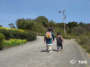 神戸総合運動公園 菜の花畑 ローラー滑り台 公園