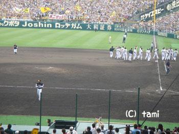 阪神甲子園球場 阪神タイガース プロ野球観戦
