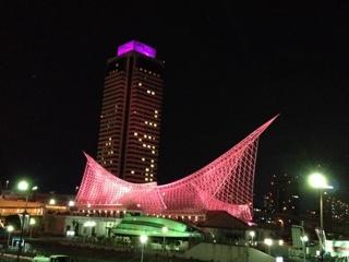 ピンクリボン 海洋博物館 オークラ イルミネーション