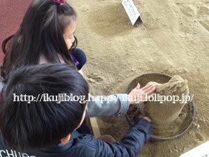 鳥取旅行 砂の美術館 美術館