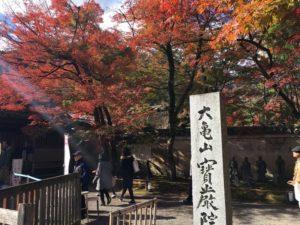 宝厳院  京都観光  紅葉名所 嵐山観光