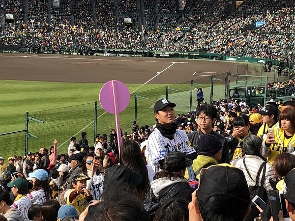 阪神甲子園球場 ファン感謝デー 阪神タイガース