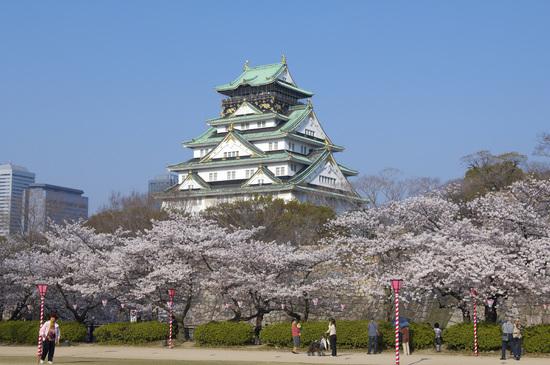 大阪城 桜名所 桜花見 ライトアップ