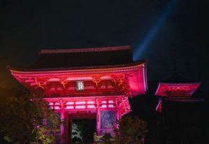 清水寺 ピンクリボン ライトアップ