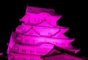 姫路城 ピンクリボン ライトアップ