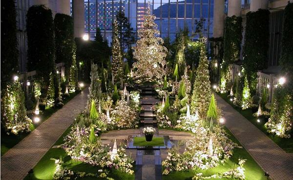 奇跡の星の植物館 クリスマスフラワーショー イルミネーション