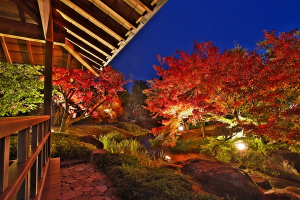姫路城好古園 紅葉ライトアップ