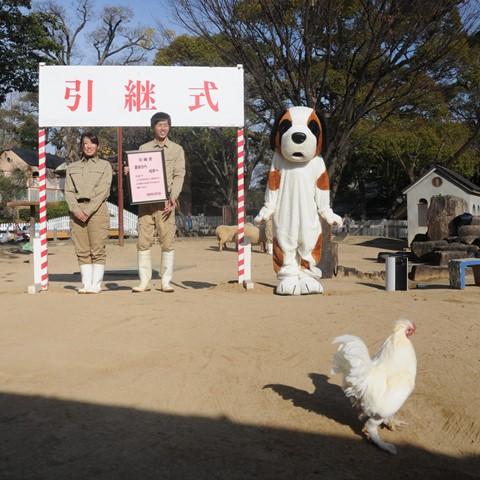 王子動物園 干支引継式