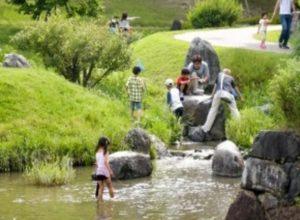 けいはんな記念公園 水遊び